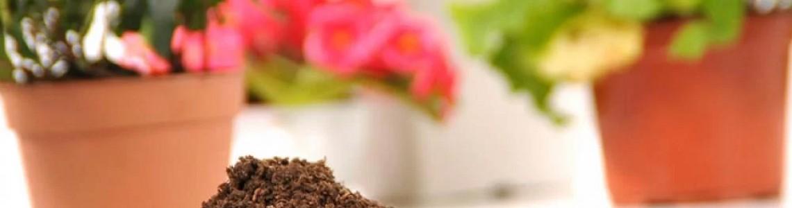 Torf ve Bitki Besinleri